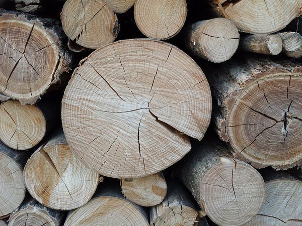 najwyższej jakości drewno kominkowe z Rybnika